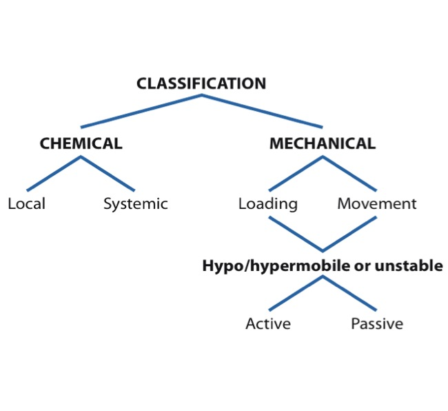 Subjective Exam – Classifying Nociceptive/Mechanical Pain